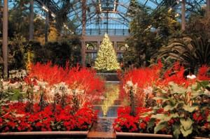 longwood-gardens-christmas-300x199
